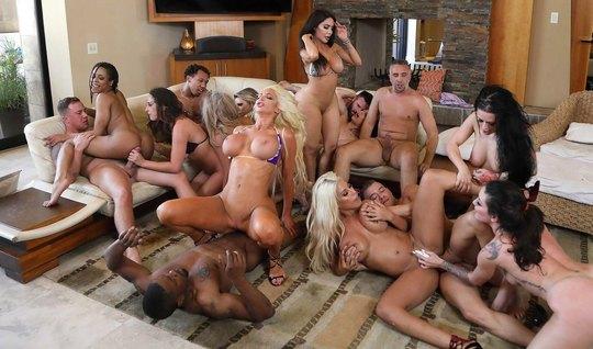 Porn stars filmed premium group sex during parody